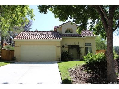 Canyon Country Single Family Home For Sale: 29930 Grandifloras Road