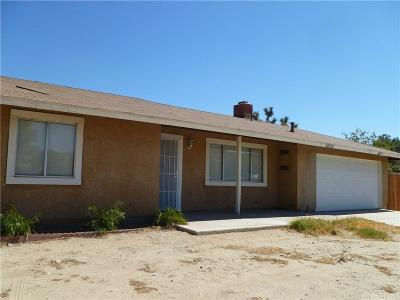 Palmdale Single Family Home For Sale: 40154 166th Street East