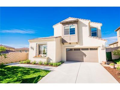 Valencia Single Family Home For Sale: 28705 Iron Village Drive