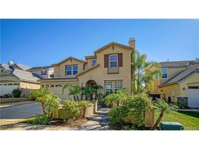Saugus Single Family Home For Sale: 19536 Castille Lane