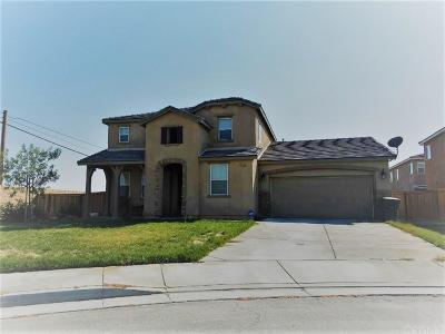 Rosamond Single Family Home For Sale: 3008 Desert Moon Avenue