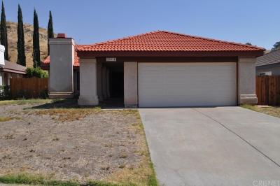 Canyon Country Single Family Home For Sale: 28014 Damar Court