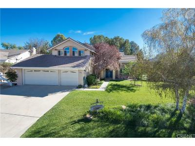 Acton Single Family Home For Sale: 32770 Dorama Avenue