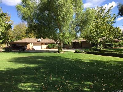 Castaic Single Family Home For Sale: 30055 Anvik Street