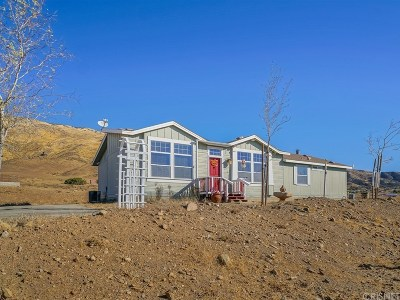Acton Single Family Home For Sale: 5727 Shannon Valley Road