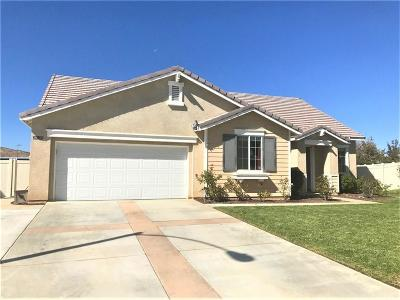 Palmdale Single Family Home For Sale: 39135 Silverberry Lane