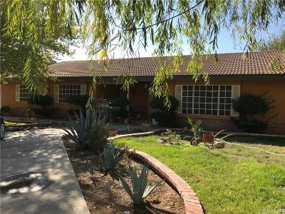Palmdale Single Family Home For Sale: 2320 West Avenue N