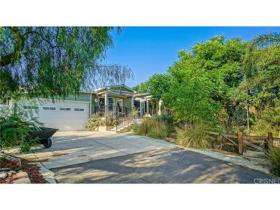 Castaic Single Family Home For Sale: 30801 Sloan Canyon Road