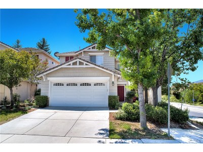 Northridge Single Family Home For Sale: 18219 Chase Street
