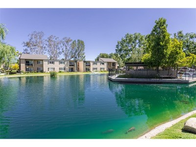 Valencia Condo/Townhouse For Sale: 24431 Trevino Drive #V10