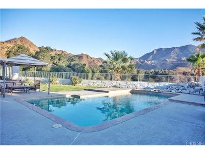 Canyon Country Single Family Home For Sale: 15701 Beaver Run Road