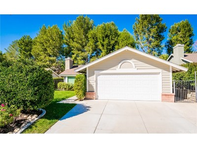 Saugus Single Family Home For Sale: 22429 Paragon Drive