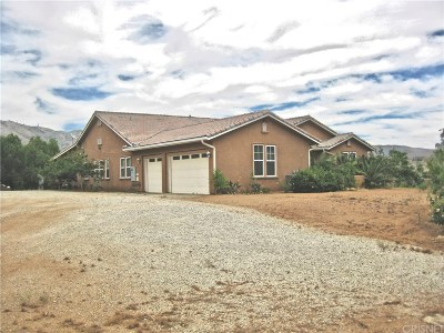 Acton Single Family Home For Sale: 34545 Juniper Valley Road