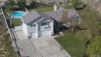 Acton Single Family Home For Sale: 32125 Camino Canyon Road