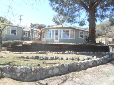 Acton Single Family Home For Sale: 35273 Red Rover Mine Road