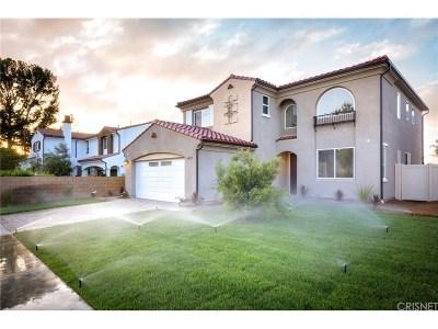Northridge Single Family Home For Sale: 17147 Burton Street