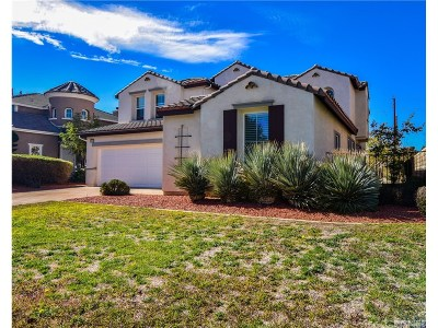 Newhall Single Family Home For Sale: 23418 Sagebrush Way