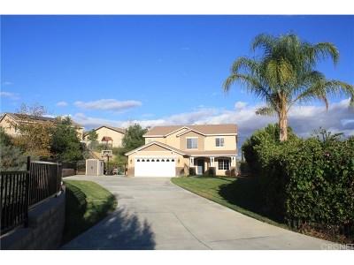 Palmdale Single Family Home For Sale: 6527 Manzanita Drive