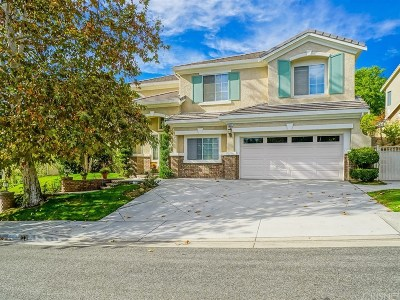 Saugus Single Family Home For Sale: 28311 Infinity Circle