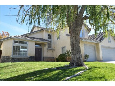 Canyon Country Single Family Home For Sale: 14601 Water Lily Court