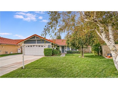 Castaic Single Family Home For Sale: 27730 Stowe Lane