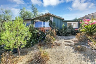 Simi Valley Single Family Home For Sale: 1061 Gaston Road