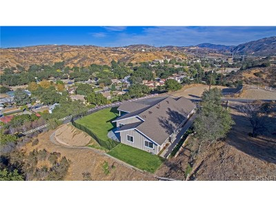 Newhall Single Family Home For Sale: 21166 Placerita Canyon Road