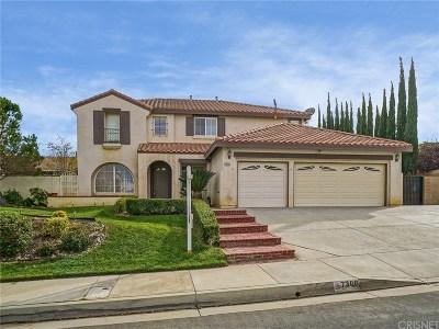 Lancaster Single Family Home For Sale: 7306 Sunnyslope Drive