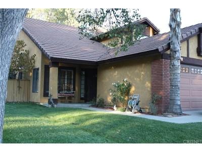 Calabasas Rental For Rent: 26841 Hot Springs Place