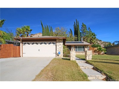 Canyon Country Single Family Home For Sale: 29754 Wisteria Valley Road