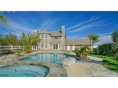 Castaic Single Family Home For Sale: 30625 Remington Road