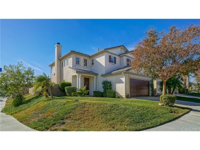 Saugus Single Family Home For Sale: 20002 Celleste Place