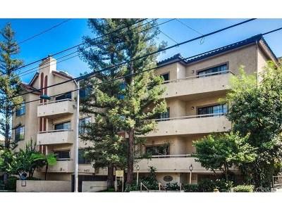Sherman Oaks Rental For Rent: 14630 Dickens Street #206