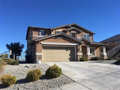 Palmdale Single Family Home For Sale: 38514 Siamese Lane