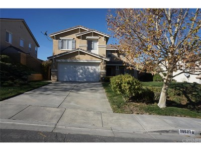 Palmdale Single Family Home For Sale: 38623 Louise Lane