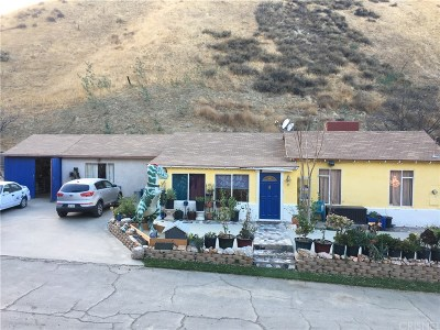 Castaic Single Family Home For Sale: 28903 Keningston Road