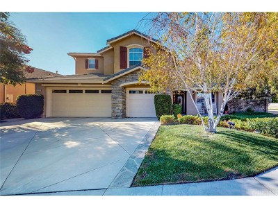 Saugus Single Family Home For Sale: 21732 Canyon Heights Circle