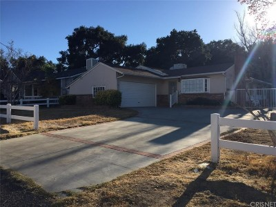 Newhall Single Family Home For Sale: 24103 Wildwood Canyon Road
