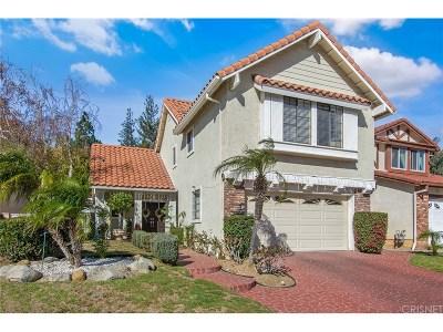 Northridge Single Family Home For Sale: 19715 Eagle Ridge Lane