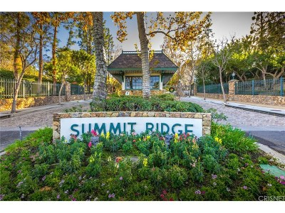 Chatsworth Single Family Home For Sale: 22528 North Summit Ridge Circle