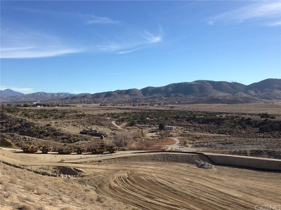 Palmdale Residential Lots & Land For Sale: Tierra Subida Avenue