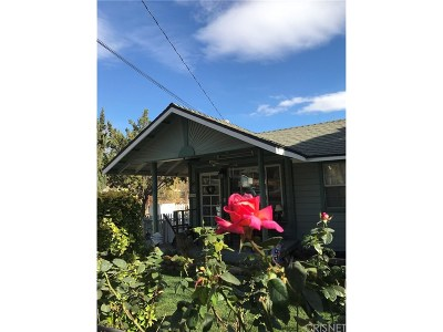 Canyon Country Single Family Home For Sale: 16900 Forrest St.