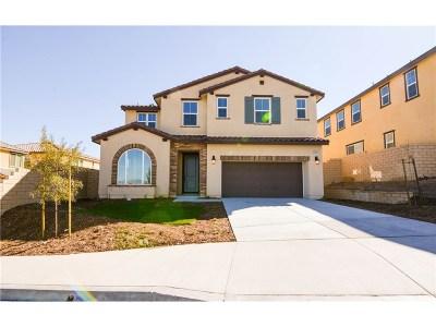 Saugus Single Family Home For Sale: 28222 Houston Court
