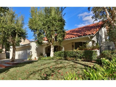 Calabasas Single Family Home For Sale: 23311 Park Mariposa