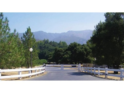 Canyon Country Residential Lots & Land For Sale: Placerita Canyon Road