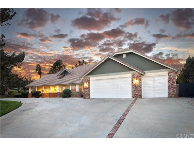 Palmdale Single Family Home For Sale: 5924 Pomegranate Place