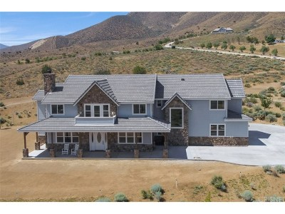 Acton Single Family Home For Sale: 32155 Mountain Shadow Road