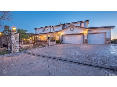 Acton Single Family Home For Sale: 34405 Katrina Street