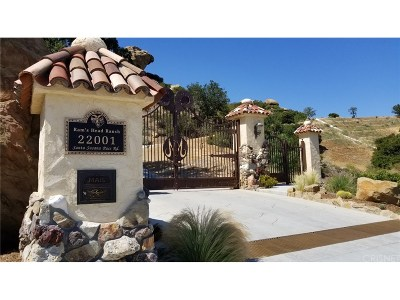 Los Angeles County Residential Lots & Land For Sale: 22001 Santa Susana Pass Road