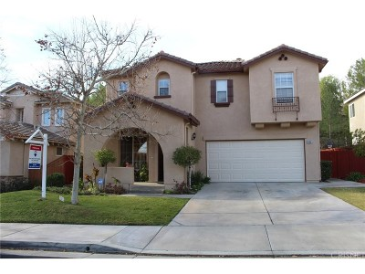Saugus Single Family Home For Sale: 28601 Silverking Trails